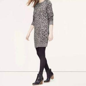 Ann Taylor LOFT Animal Print Sweater Dress SP
